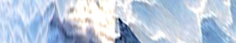 pnny.gurke,meerschaum Banner